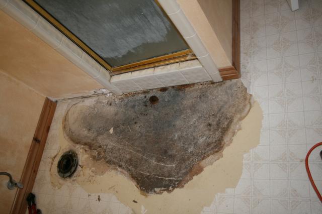 Leaking Shower Pan